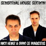 Nico Heinz & Fabio De Magistris Sensorial House Section Live Performance